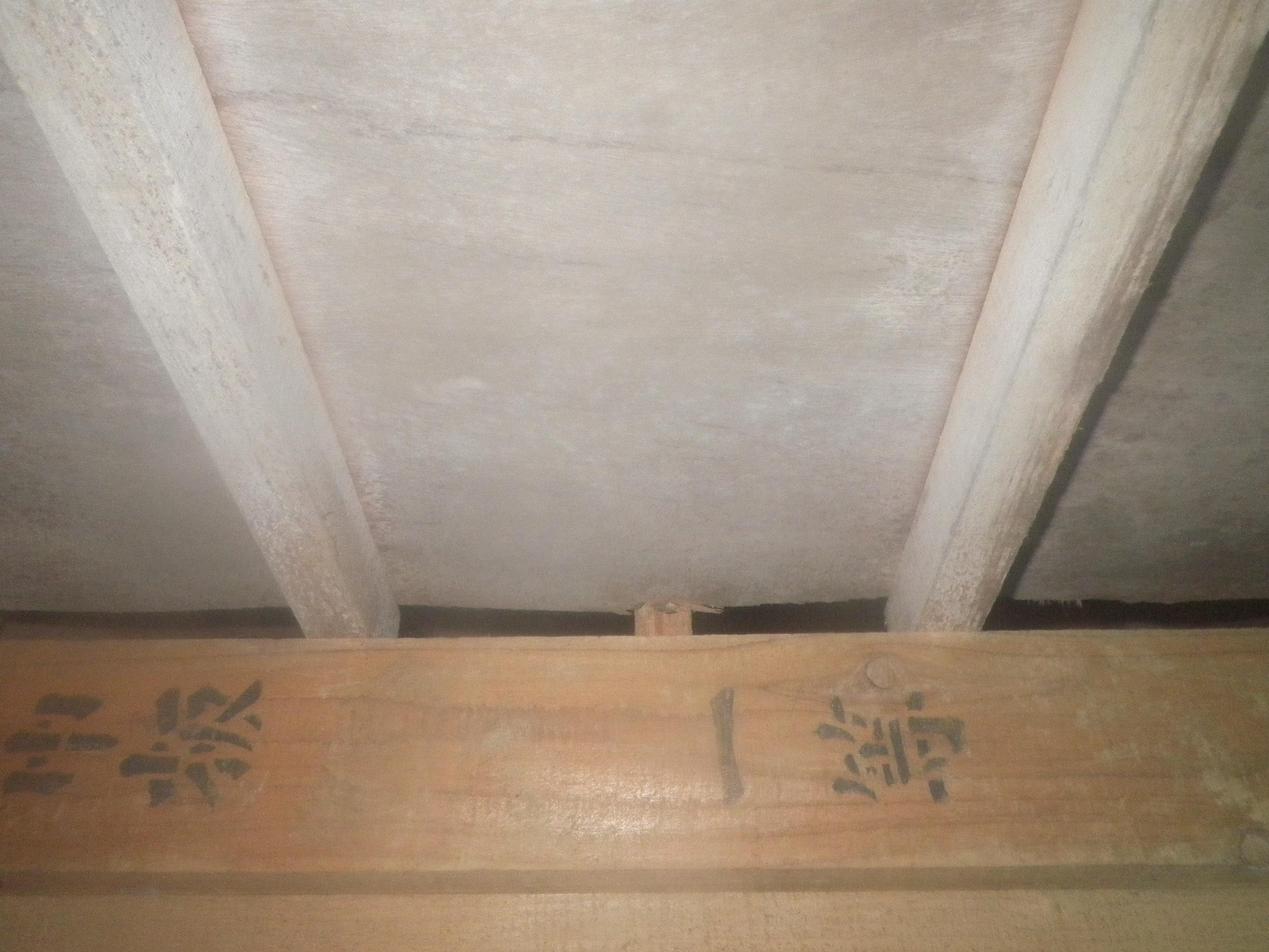 床板のカビ