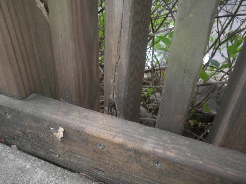 柵の被害1