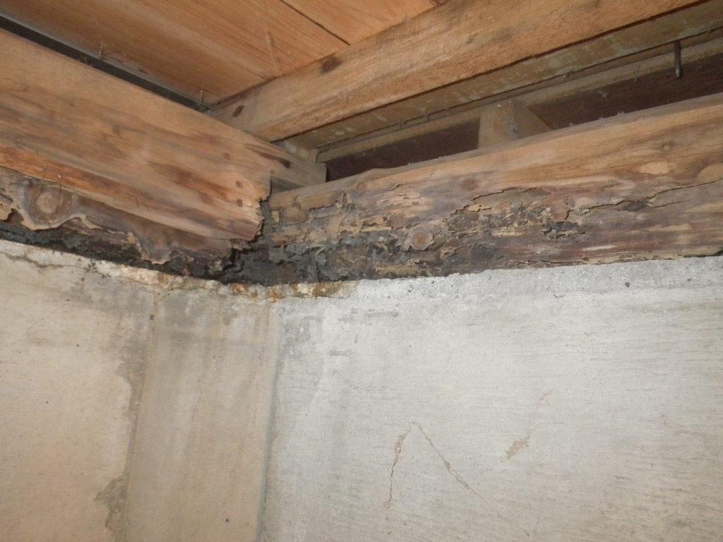 浴室土台被害1